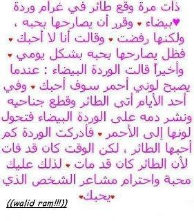 9asaid Alhob